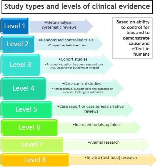 Master level medical research paper services